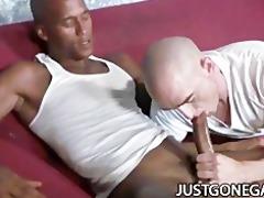 white stud worships large darksome rod