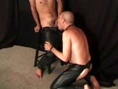 leather wolf - scene 0
